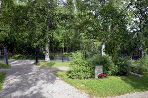 Ett stenkast från den gamla kyrkogården på Skönsmon ligger den plats där det säga att människor både pryglades och avrättades.