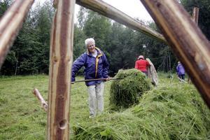 Kerstin Larsson äger ängen där slåttern ägde rum i somras. Edsmyråns intresseförening jobbar för att få fram en mer artrik örtvegetation.