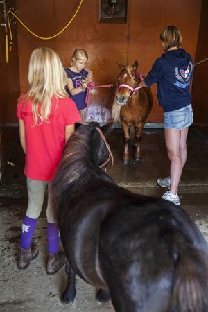 Efter träningen får ponnyerna en liten dusch. Madelene Olofsson står och väntar med Fabian, på sin tur efter Liv Sjölund med hästen LA Iron Man och mamma Anna-Karin Sjölund.
