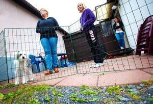 """Liz-Marie Persson från Uppsala vaktar sin mammas hus på Frösön. I söndags fick hon besök av en plattläggare. """"Jag vet att det finns oseriösa personer inom den här verksamheten och vill varna andra"""", säger hon. Foto: Håkan Luthman"""