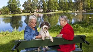 Lillsjön börjar växa igen och behöver grävas ur. Gunhild Söder med hunden Molly och Mona Gidåker är engagerade i Lillsjöns trivselförening och ska försöka samla in pengar till projektet.