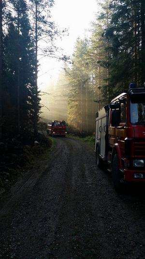 Mycket gick fel eller sköttes klantigt under den jättelika skogsbranden. Insändarskribenten vill utkräva ansvar av de ansvariga.