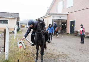 Miranda Fernström, som testar hästorietering för första gången, upptäcker svårigheterna med att komma åt kontrollen från hästryggen.