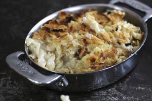 En krämig pastagratäng med massor av ost kan kanske ge den där trösten du behöver.