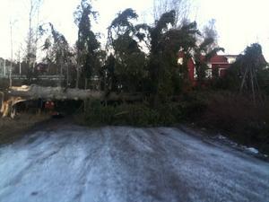 Kerstis väg 5 i Sundborn är vi helt instängda.