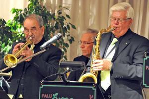 Falu Evergreens stod för underhållningen med flera välkända låtar.