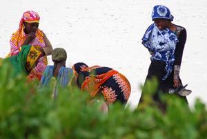 Kvinnorna är på väg för att fira eid al-fitr i byn Matemwe på Zanzibar och tar strandvägen dit.   Foto: Sofia Hallonsten
