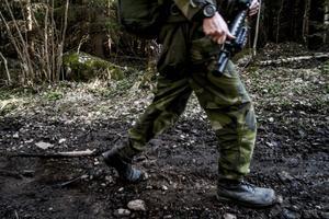 Debattörerna förespråkar ett svenskt medlemskap i Nato, men påpekar att ett inträde i försvarsunionen kräver att Sverige även satsar  på det egna försvaret.
