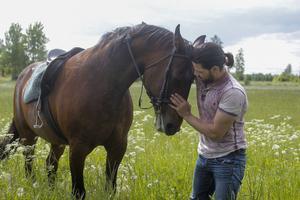 Naeef Almezel har en nära relation till hästar., som talade han deras språk.