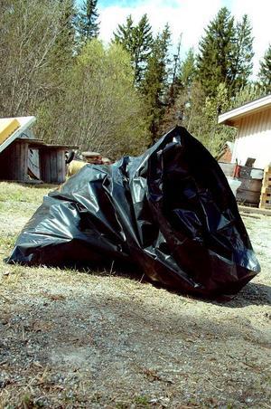 För att inte irritera grannar och förbipasserande ska Bergs hyreshus nu försöka hitta en bra förvaringsplats för avfallet innan det skickas till sopstationen.Foto: Sandra Högman
