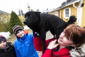 Mattias och Jonatan älskar hundar lika mycket som deras mamma Therese. Saken blir inte sämre av att Nira ska bli tv-stjärna.