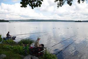 Kurt-Arne Larsson och Patrik Dahlström tävlar i internationellt mete och fiskar bland annat med upp till 14 meter långa spön.
