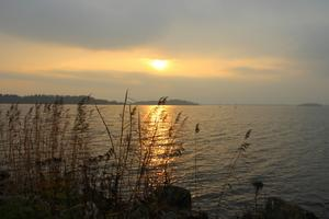 En härlig promenad vid Mälarens strand, kl.15 den 6 november. Solen tittade fram bara ett ögonblick och jollekappseglarna var ute på en tur.