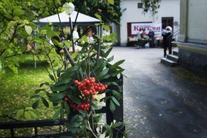 Arrangörerna hade tur med vädret under höstmarknaden på Vargen, som hölls för sjätte året.