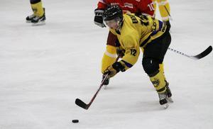 Målgörare. Fagersta AIK hade inga problem att besegra Linden Hockey. Jens Ekegren gjorde ett av hemmamålen i 9-4-segern.