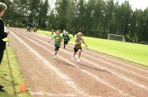 Hampus Lindberg, John Sunnebrandt och Viktor Sohlborg tog fram tävlingsinstinkten när de sprang 60 meter på Stålringens idrottsplats på torsdagen. Friidrott var en av totalt elva sporter som Hoforseleverna i årskurs tre till sex fick pröva på under gårdagens stora inspirationsdag.