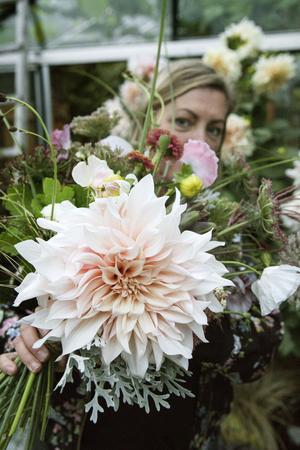 En improviserad bukett blir snabbt till i Lindas vana floristhand. Med instagramstjärnan  Café au lait som självklar huvudrollsinnehavare.
