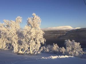 Linda Fridh har fotat den här bilden i Ramundberget.