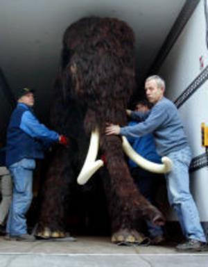 Sergej är en modell av en riktig mammut som levde i Ryssland för 13000 år sedan. Han har varit mycket populär på museet,  både bland barn och vuxna.