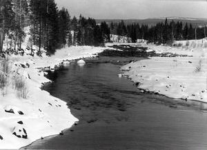 Sölvbacka ström, fotograferad 1979 av Länstidningens fotograf. Det var under den här tiden striden var som hetast om vattenkraftsutbyggnad av strömmarna.