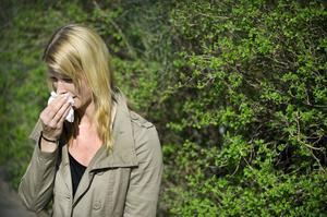 I Västmanland fick tio patienter per 10 000 invånare allergivaccination i fjol. I Norge och Danmark behandlas mer än tre gånger så många patienter.