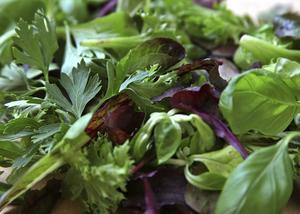 Variera blad och örter i salladen. Det skapar liv och höjer smaken. Tänk också på att salladsbladen måste ges tid att torka efter sköljning innan de hamnar på tallriken.