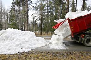 Många hundra lastbilsflak med lagrad snö krävs för att täcka det 2,6 kilometer långa spåret. Foto: Henrik Flygare