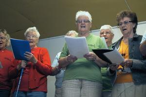 SPF-kören under ledning av Juliette Lundin sjöng under seniormässan.