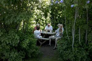 Typisk bild av Bingsjö, någon som spelar på en fiol i varje buske.