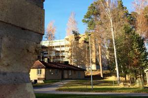 Läkarvillorna vid Sandvikens sjukhus kan bli boende för ensamkommande flyktingbarn.