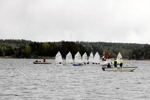 Start. Samling inför starten i träningstävlingen för optimistjollarna. Följebåtar med tränare och publik hjälper de unga seglarna.