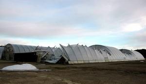 RASAT. Ett av växthusen i Brattfors gav vika för snön i vintras. Vad som ska hända med området är fortfarande oklart – men växthusen kommer troligen att rivas.