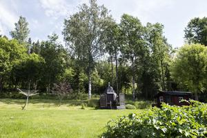Skogen bakom Handelsträdgården dit två av de misstänkta flydde.