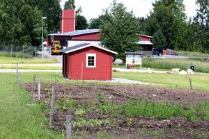 Odlingslotter vid Lillåns vattenpark.