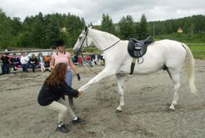 Hästmassör Anna Karström mjukar upp hästen Caspian inför träningen.