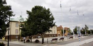Ljusslingor i träd närmast Resecentrum och en konstgjord julgran med 3000 lampor på Tingshustorget ingår i förslaget.