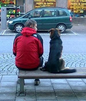 Råkade gå förbi de här två på stora gatan i november och tyckte det såg mysiigt ut med hunden på bänken. Bra med en mobilkamera vid sådana tillfällen.PS glömde tel. numret i förra inskicket. Ds