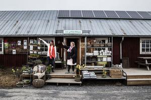 Många av kunderna är stammisar som kommer in med jämna mellanrum. En del äldre damer från byn kommer ofta in och handlar en blomma eller bara för att prata en stund. Andra åker förbi på väg upp till stugan i fjällen och några har åkt ända från de södra delarna av Sverige, säger Cicci.