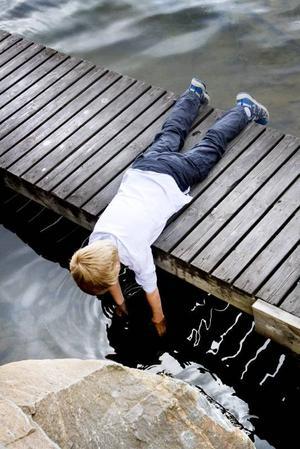 GULDSKATT. Alexander Klingberg fiskade upp en guldtia ur vattnet vid Axmar brygga.