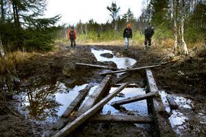 I helgen körde fyrhjulingar sönder stora myrområden i Trödjeskogarna. Markägarna Mats Eriksson, Björn Sjunning och Rolf Israelsson  är frustrerade över situationen. – Det här har blivit laglöst land, säger Rolf Israelsson.