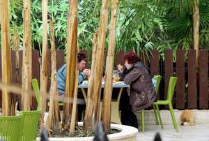 En kopp te utomhus är ingen konst längs Sotjikusten.