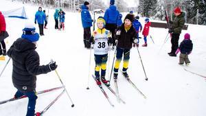 Avestaloppet flyttas till mitten av februari. Här är en bild från 2016, då Mille Sahlberg-Linder och Jesper Åberg var två av deltagarna.