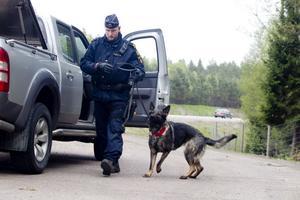 Sökte knark. Hundföraren Joakim Rosengren och Indy söker efter narkotika i ett misstänkt fordon.