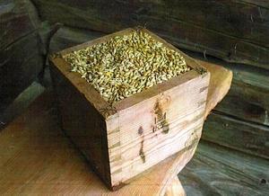 Dåtidens skolpeng erlades i koppar med korn - bilden från skriften från mattmar