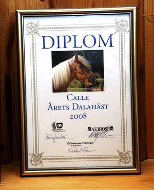 Diplomet som visar att Calle var först med att få utmärkelsen Årets Dalahäst.