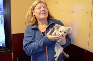 Susanne Sundqvist firar snart ett års jubileum med hundhotellet i Söråker. Hyresgästen på bilden heter Max och är en Chihuahua-korsning.