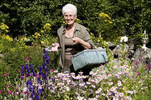 Ingrid Andersson vakar som en hök över sina blomster. Allt visset och överblommat ska bort. Notera sekatören i hennes högra hand.