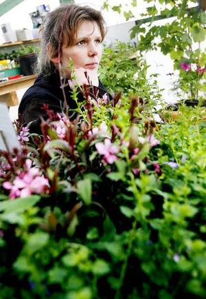Trivs den i skugga? Behöver den mycket vatten? Den typiska kunden som söker sig till Marie är en vanlig, trädgårdsintresserad människa som vill ha tips och råd om vilka växter och blommor de ska välja för olika lägen.