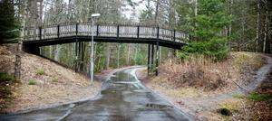 Här skedde överfallet. Gärningsmannen stod och väntade där motionsspåret korsar cykel-/gångbanan, mitt i skogen.