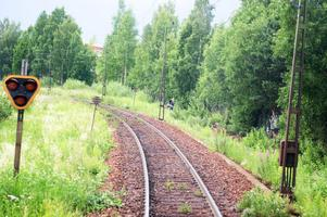 Jag har tidigare jobbatvid järnvägen och även varit med om otrevliga olyckor med folk på spåret, skriver signaturen Judinna med blå ögon.